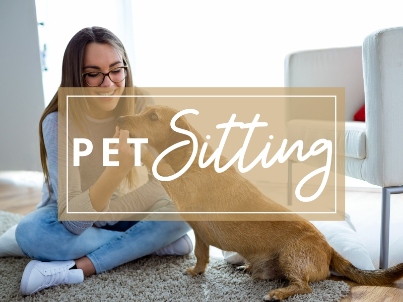 Zen Dog Pet Care pet sitting